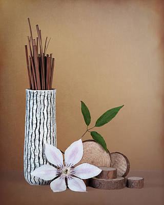 Stick Photograph - Clematis Flower Still Life by Tom Mc Nemar