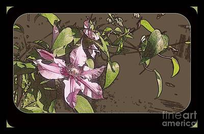 Photograph - Clematis by Jodie Marie Anne Richardson Traugott          aka jm-ART