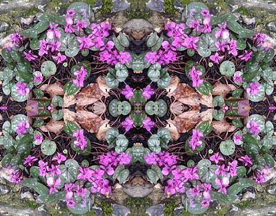 Photograph - Clematis Mandala 2 Photo Art by Julia Woodman