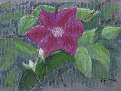 Pastel - Clematis by Marina Garrison