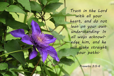 Photograph - Clematis With Proverbs by Ann Bridges