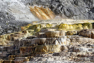 Photograph - Cleopatra Terrace In Yellowstone National Park by Catherine Sherman