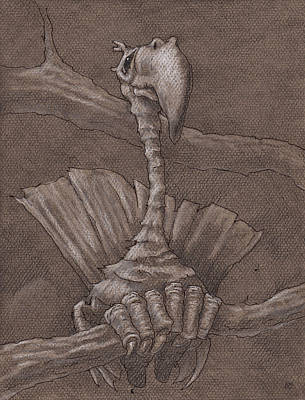 Cletis Art Print by Ethan Harris