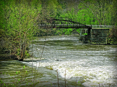 Photograph - Cleveland Metropark Bridge by Joan  Minchak