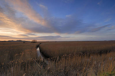 Cley Marshes  Art Print by Liz Pinchen