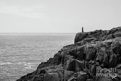 Photograph - Cliff by Alana Ranney