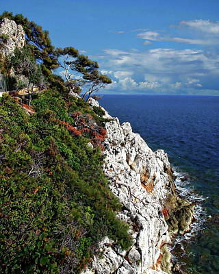 Photograph - Cliff And Ocean by Anthony Dezenzio
