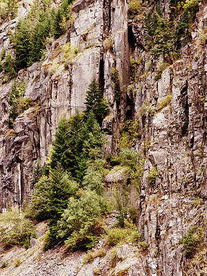 Photograph - Cliff Hanging by Leslie Montgomery