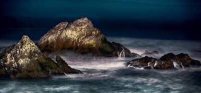 Art Print featuring the photograph Cliff House San Francisco Seal Rock by Steve Siri