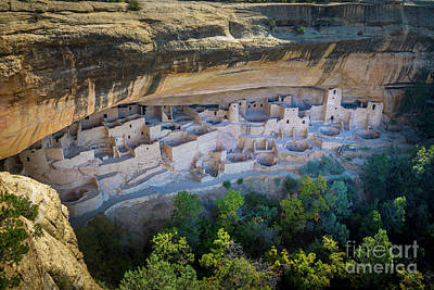 Photograph - Cliff Palace by Inge Johnsson