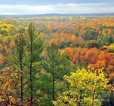 Autumn Landscape Photograph - Cliff Top Autumn View by Terri Gostola