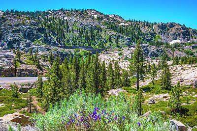 Photograph - Cliffs Above Donner Lake II by Steven Ainsworth