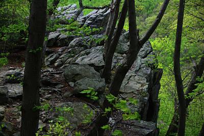 Photograph - Annapolis Rock by Raymond Salani III