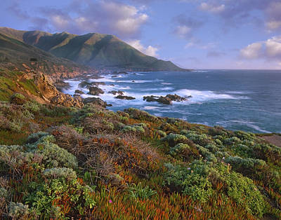Of Big Sur Beach Photograph - Cliffs And The Pacific Ocean Garrapata by Tim Fitzharris