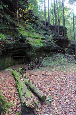 Photograph - Cliffs In The Forest by Angela Murdock