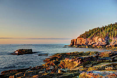 Photograph - Cliffs On Otter Point Acadia National Park by Jean Hutchison