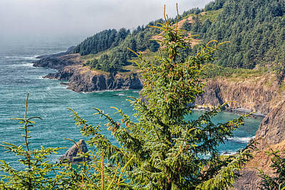 Photograph - Cliffs Of Oregon by John M Bailey