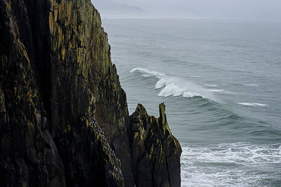 Photograph - Cliffs Of Oswald West by Robert Potts