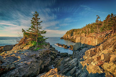 Quoddy Photograph - Cliffs Of Quoddy Head State Park by Rick Berk