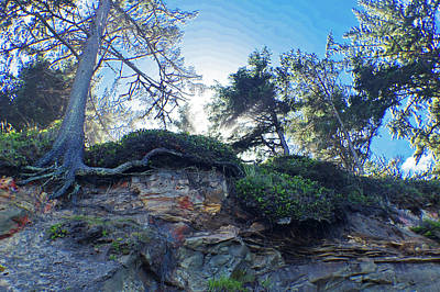 Photograph - Cliffside by Adria Trail