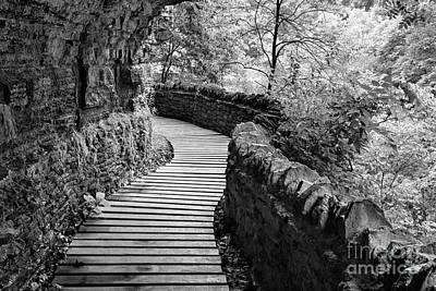 Photograph - Cliffside Path - D010401 by Daniel Dempster