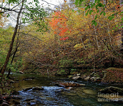 Photograph - Clifty Creek Fall by Paul Mashburn