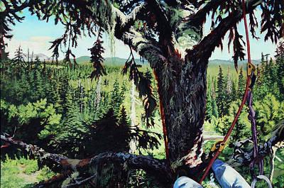 Climber's View  Original