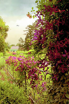 Photograph - Climbing Clematis by Jessica Jenney