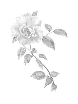 Art Print featuring the painting Climbing Rose II by Elizabeth Lock