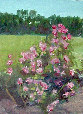 Painting - Climbing Roses At The Rose Gardens by Paul Thompson