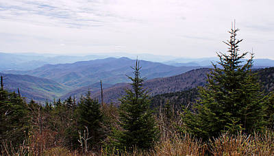 Photograph - Clingman's Dome View by Sandy Keeton