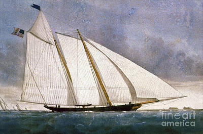 Photograph - Clipper Yacht America by Granger