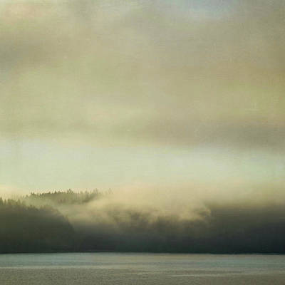 Photograph - Cloaked by Sally Banfill