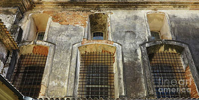 Photograph - Cloistered by Vivian Christopher