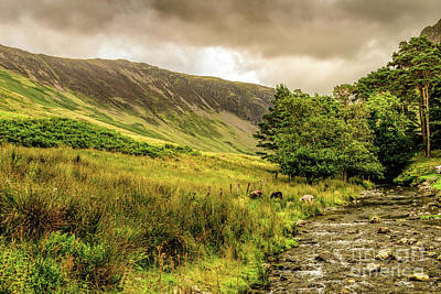 Photograph - Close To Buttermere by Elvis Vaughn