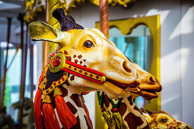 Fanciful Photograph - Close Up Giraffe Ride by Garry Gay