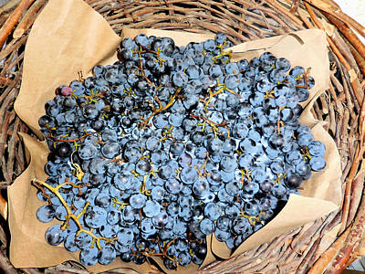 Close Up Of Black Grapes In A Basket Art Print by Lanjee Chee