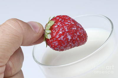 Close-up Of Man's Hand Putting Strawberry Into Glass Of Milk Art Print