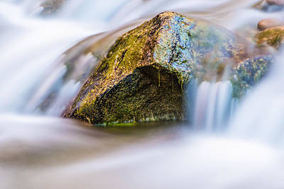 Photograph - Close Up Of River In Zion by John McGraw