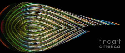 Digital Art - Closed Eye by Wendy Wilton