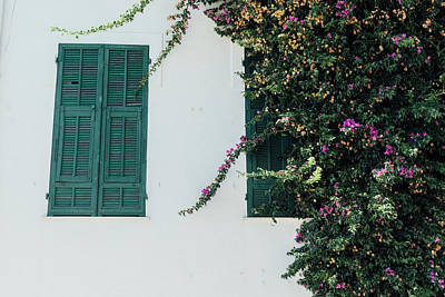 Photograph - Closed Shutters With Purples Vines by Alexandre Rotenberg