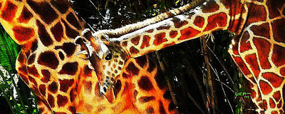 Photograph - Closeup Of Giraffes by Mickey Wright