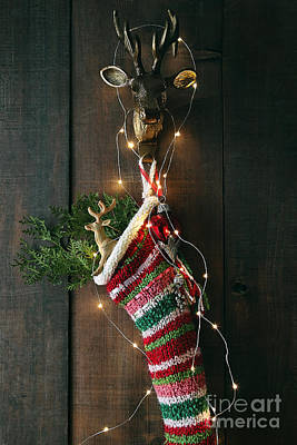 Photograph - Closeup Stripe Wool Stocking With Lights by Sandra Cunningham