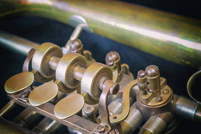 Photograph - Closeup View Of The Trumpet Flaps. Horizontally.  by Jaroslav Frank
