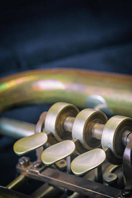 Photograph - Closeup View Of The Trumpet Flaps by Jaroslav Frank