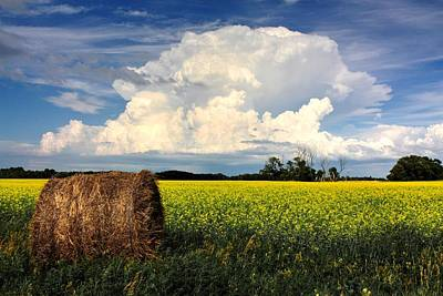 Photograph - Cloud Bale by David Matthews