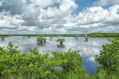 Photograph - Cloud Covered Wetlands by John M Bailey