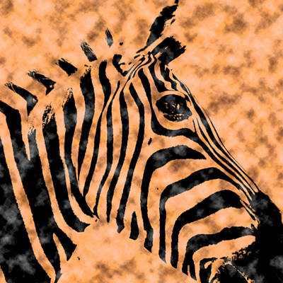 Digital Art - Cloud Face Zebra by Bartz Johnson