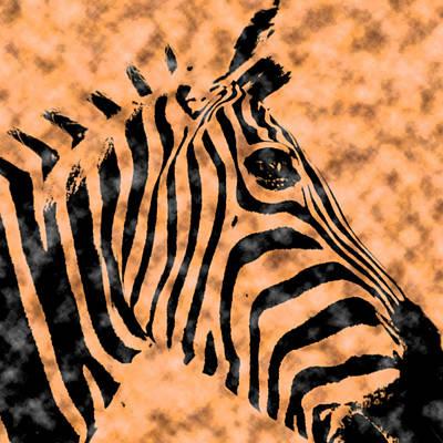 Cloud Face Zebra Art Print by Bartz Johnson