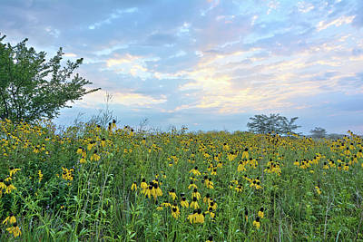 Photograph - Cloud Filled Morning by Bonfire Photography